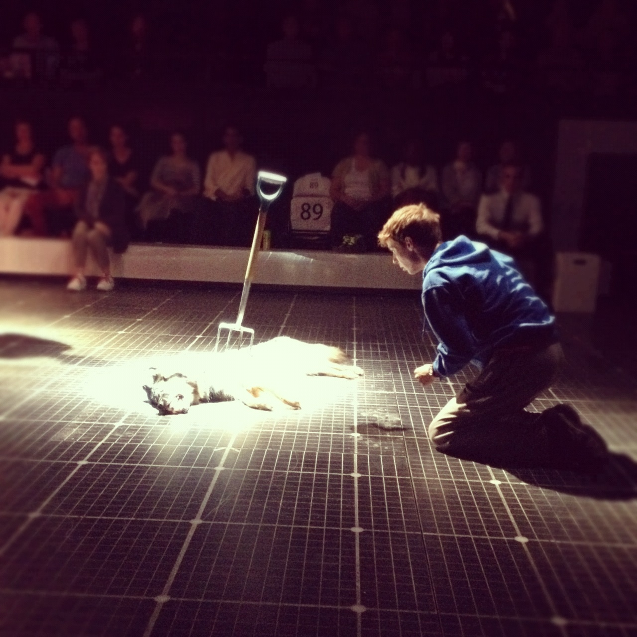 The Curious Incident of the Dog in the Night-Time to close in the West End